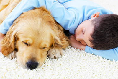 Boy lying on soft carpet with puppy /